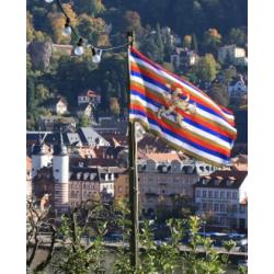 Flagge der Kurpfalz